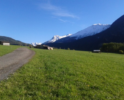 Natur Ötztal Tirol
